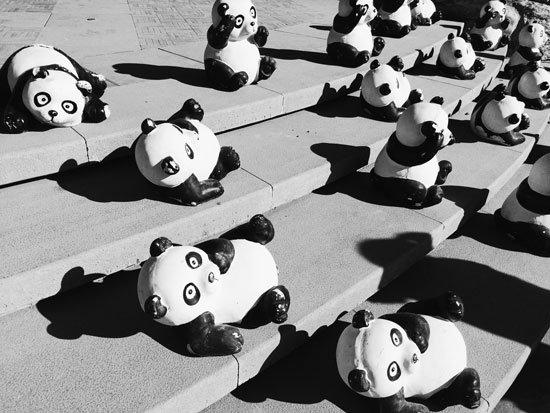 Google Panda y el Contenido duplicado