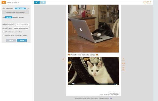 Usando vídeo en Newsletters
