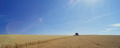 barreras agricultura UK
