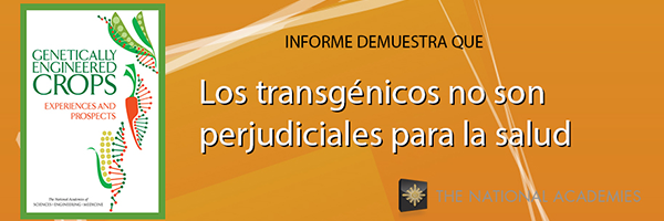 Informe OMGs