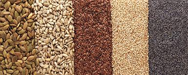 Zinc semillas cultivos