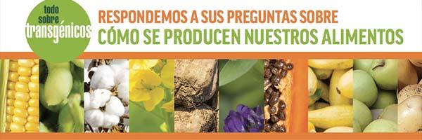 Infografías GMO Answers