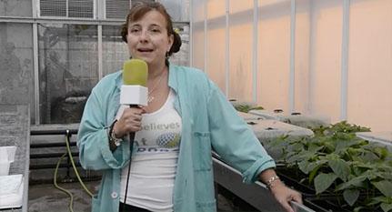 Entrevista Marisé Borja