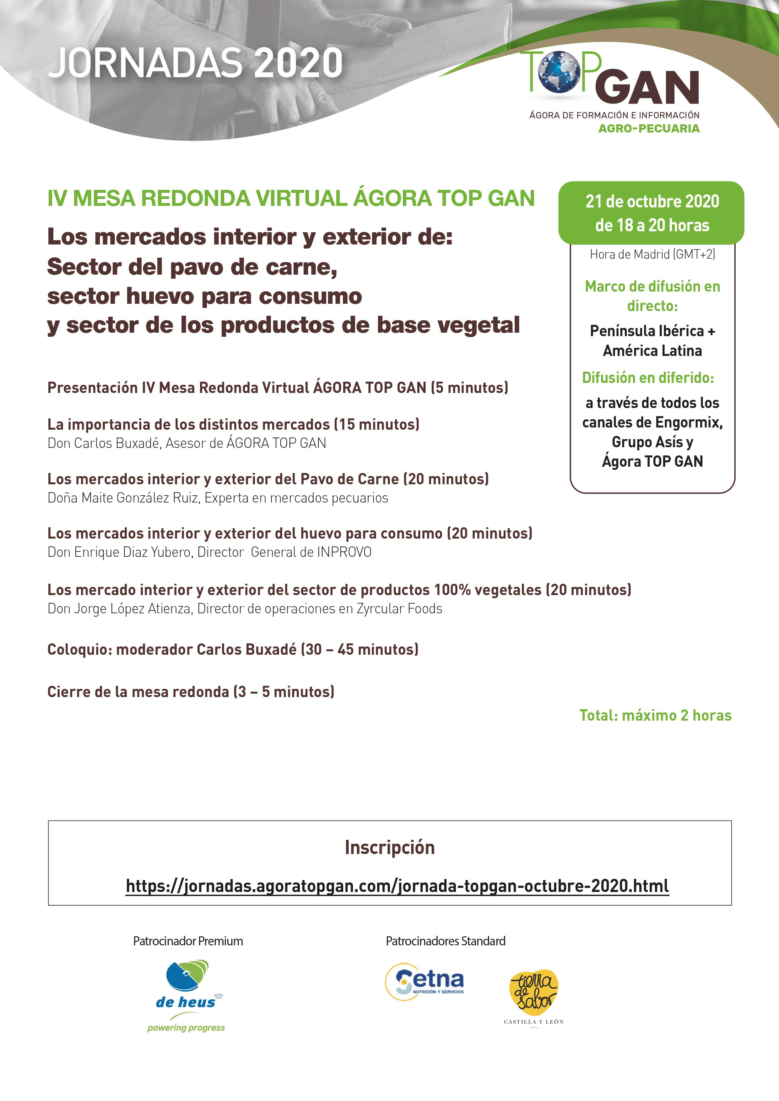 Cartel IV Mesa Redonda Virtual