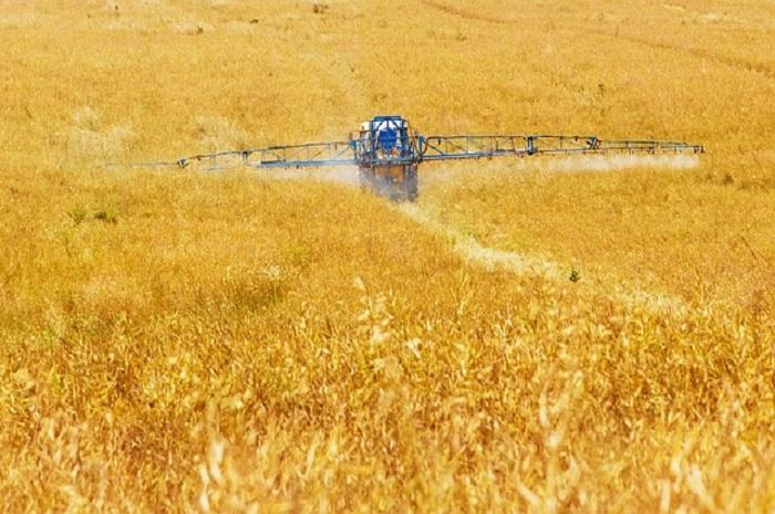Los suicidios en el sector agrario francés