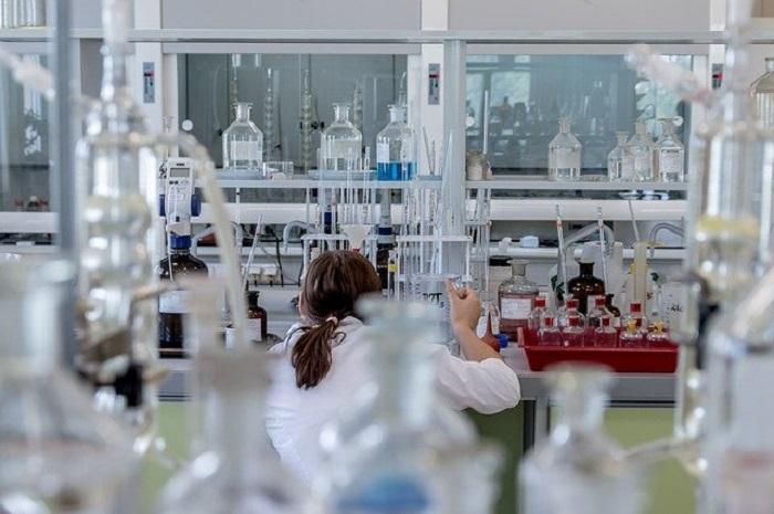 Singapur, primer país con una ley sobre carne de origen laboratorial