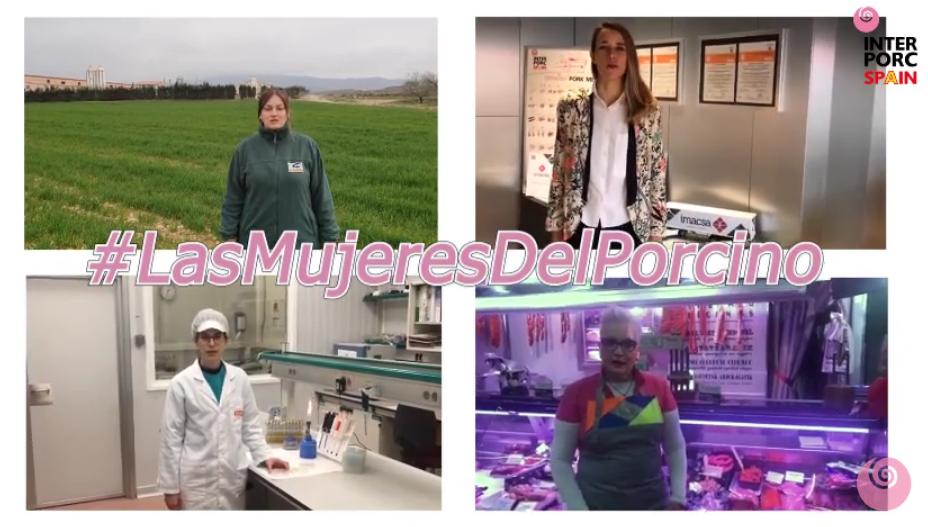 El sector porcino de capa blanca:  Recortando la brecha de género en España