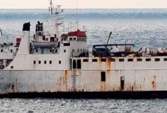 Los terneros que han navegado en barco el Elbeik