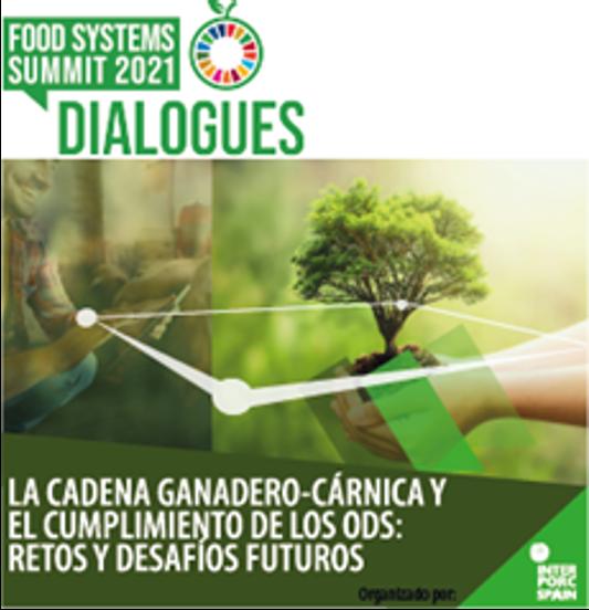 La producción cárnico-ganadera garantía de sostenibilidad de los sistemas alimentarios