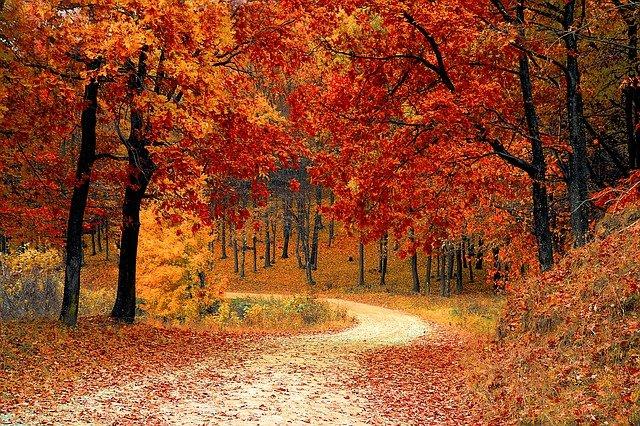 Se prevé un otoño relativamente cálido y seco