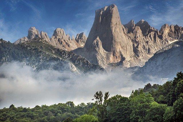 El Gobierno del Principado de Asturias recurre contra la decisión del lobo