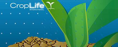 Seguridad alimentaria cambio climático